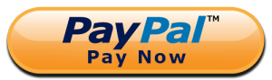 paypal button pay now